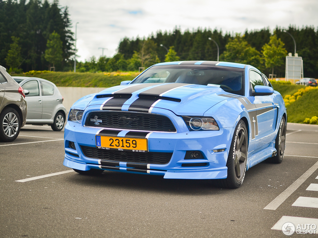 ford mustang shelby gt 500 supersnake 2013 1 augustus 2016 autogespot. Black Bedroom Furniture Sets. Home Design Ideas