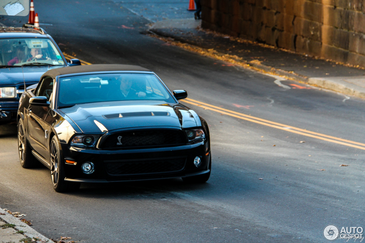 ford mustang shelby gt500 convertible 2010 11 august 2016 autogespot. Black Bedroom Furniture Sets. Home Design Ideas