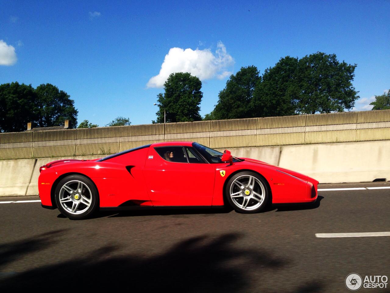 Enzo Ferrari Car  Price