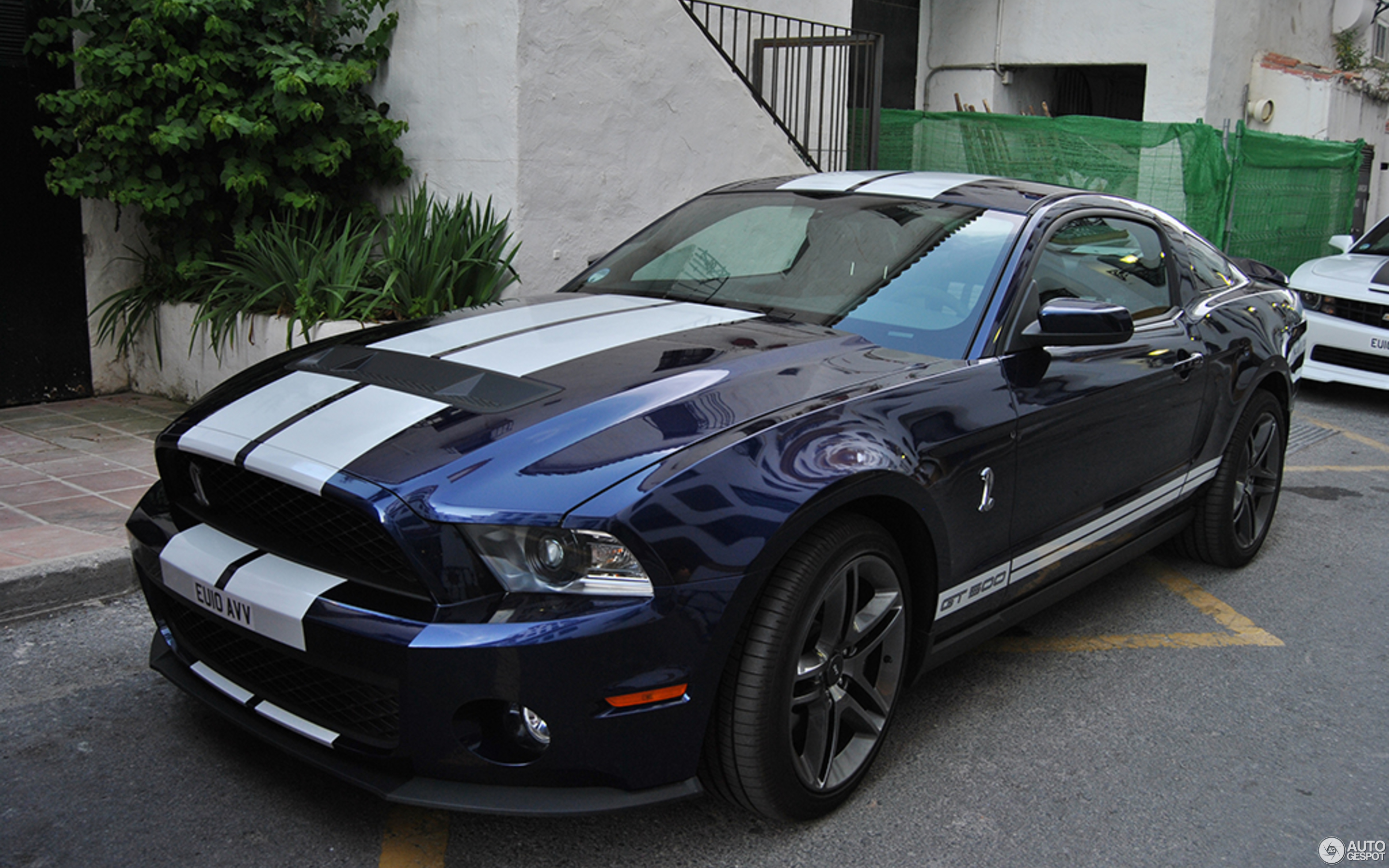 Ford Mustang Shelby GT500 2011 17 May 2016 Autogespot