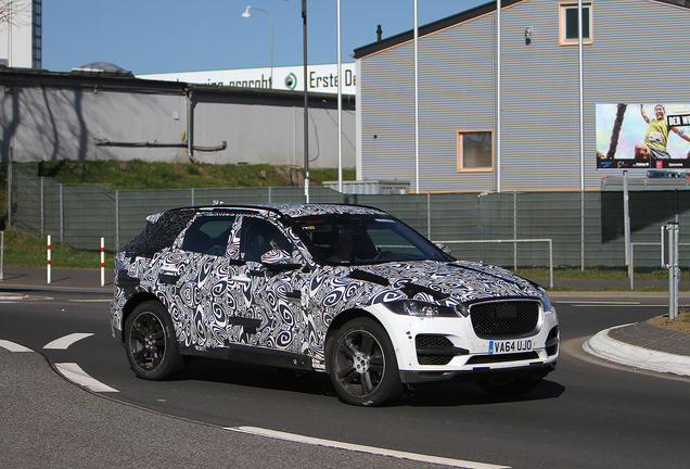 Jaguar E-Pace Mule