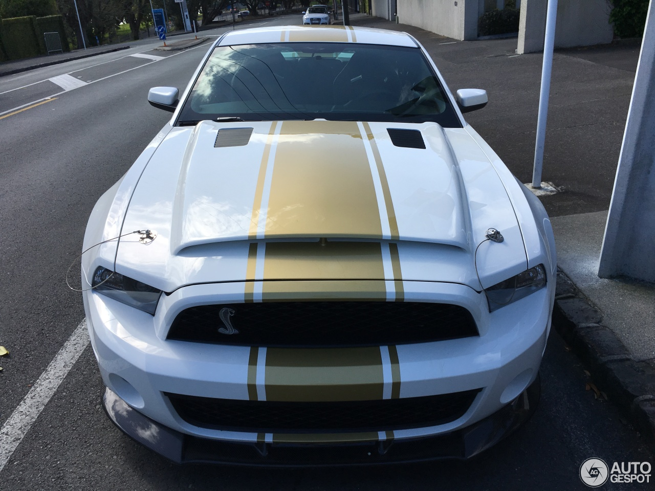 Super Snake For Sale >> Ford Mustang Shelby GT500 Super Snake 2011 50th ...