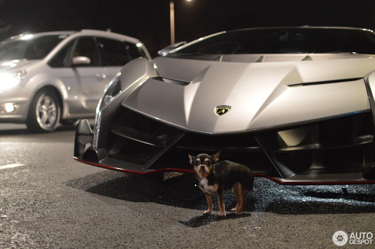 Lamborghini Veneno - 25 December 2016 - Autogespot for Lamborghini Veneno Gold  585ifm